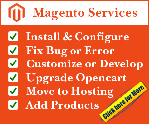 install customize and fix error magento services