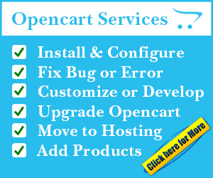 install customize and fix error opencart services