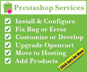 install customize and fix error prestashop services