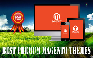 12+ Top Best Premium Magento Themes